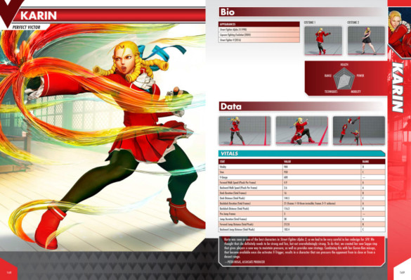 extrait guide officiel street figther V